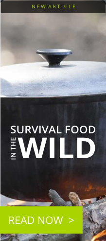 survival-food-in-the-wild-banner.png